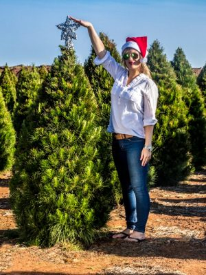 Fresh Cut Christmas Trees 4 Foot Premium